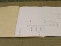 一系統家系図